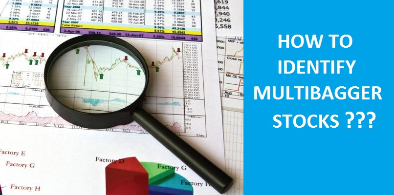 How to identify a multibagger stock?