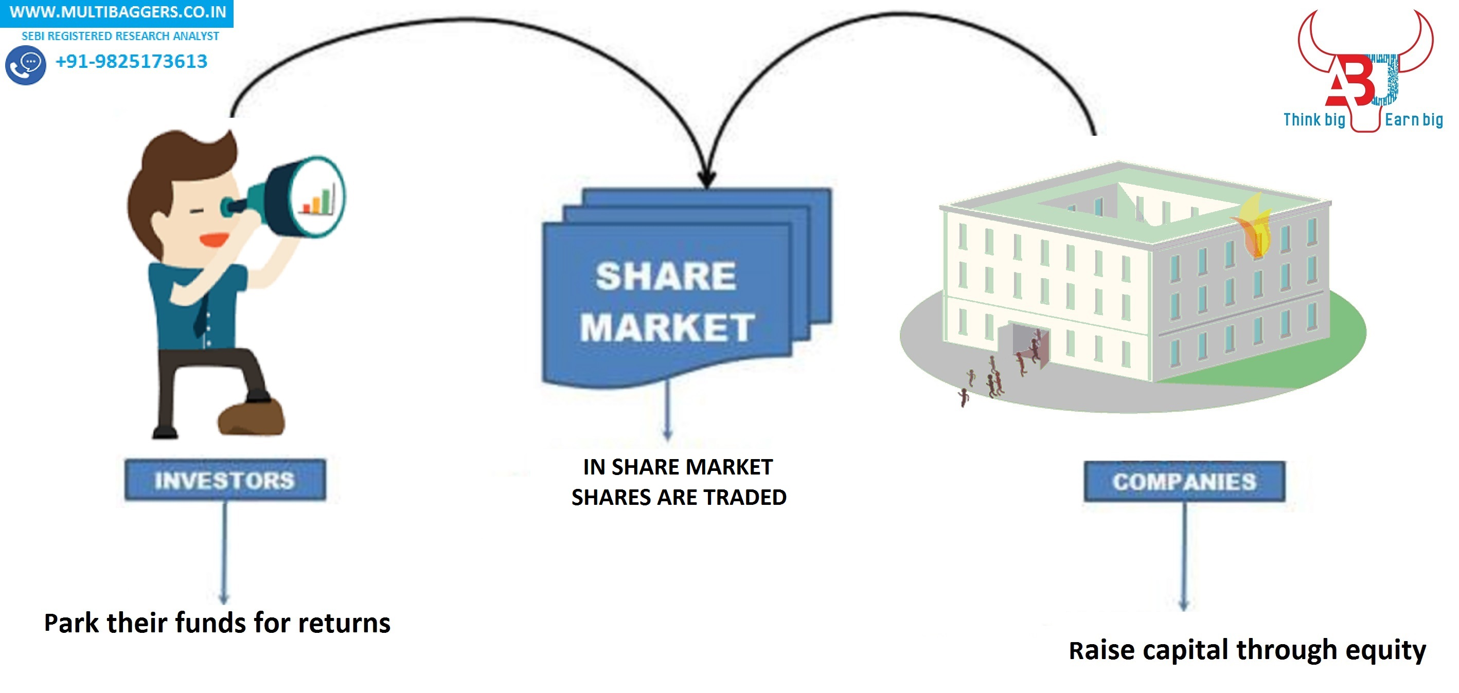 What is a Share and What is a Share Market?